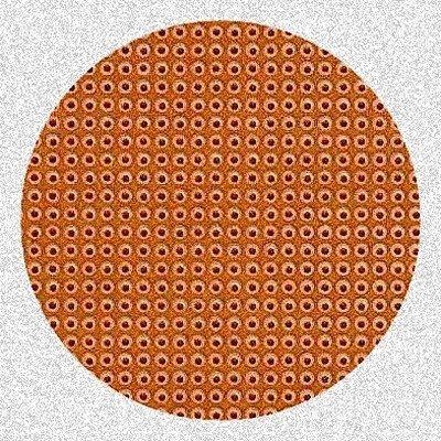 Circular Circuit Board