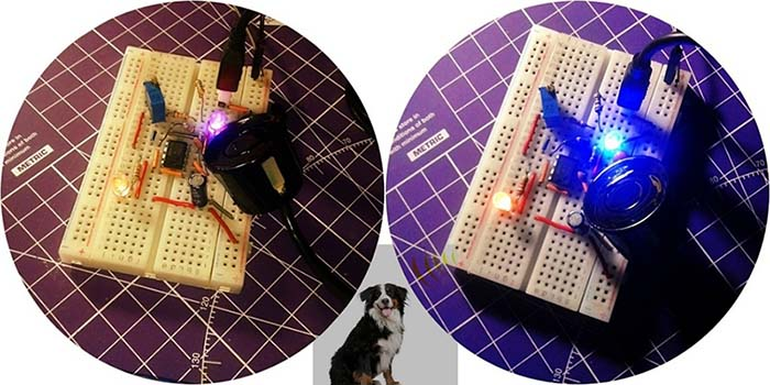 Dog Silencer Breadboard
