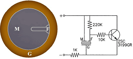 Piezo Buzzer Basic Circuit
